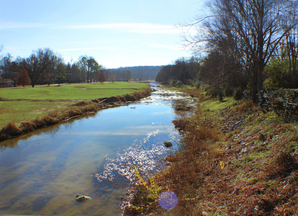 Aldridge Creek Watershed Stormwater Management Plan Survey and Flood Elevation Certificates, Huntsville, AL